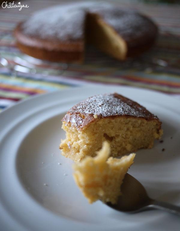 gâteau moelleux au lait concentré