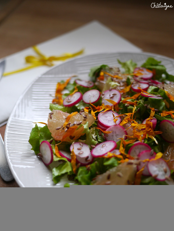 salade vitaminee 1