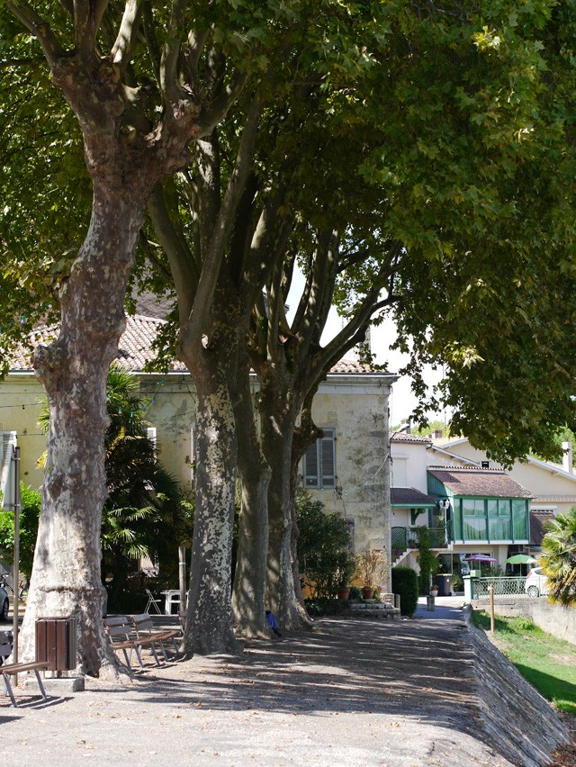 Couthures-sur-garonne (5)
