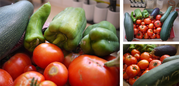sauce tomates au basilic