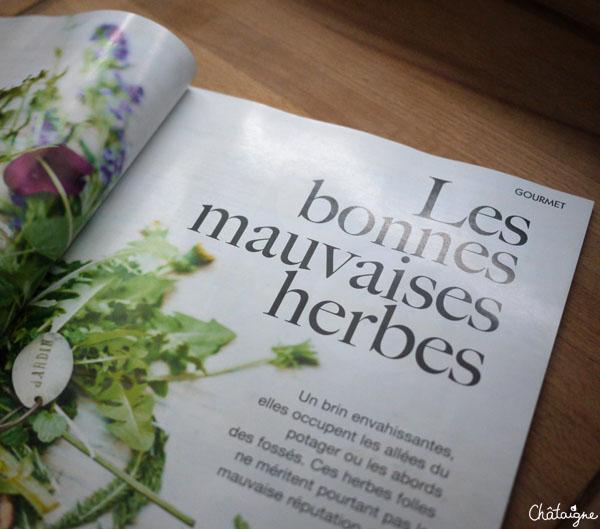 magazines 11