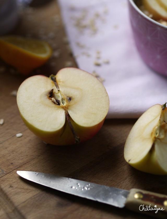Porridge aux pommes (2)