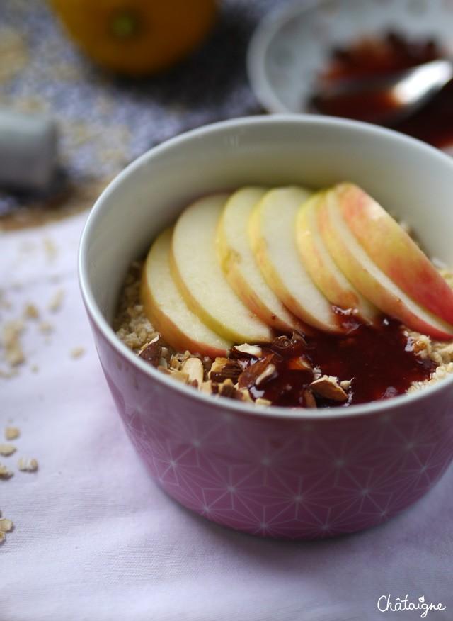 Porridge aux pommes (6)