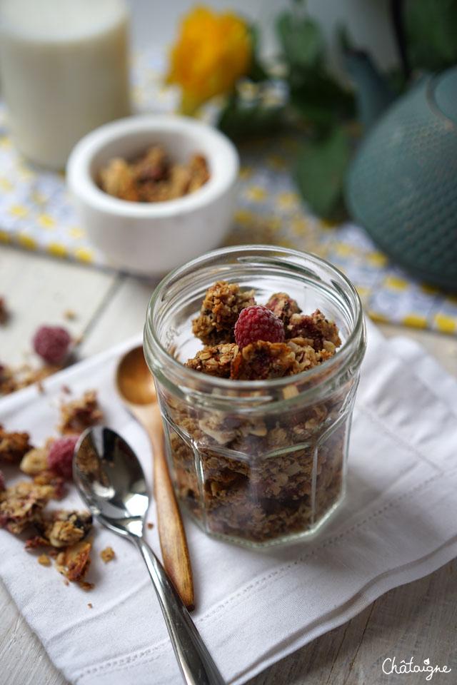 granola framboises-cranberries