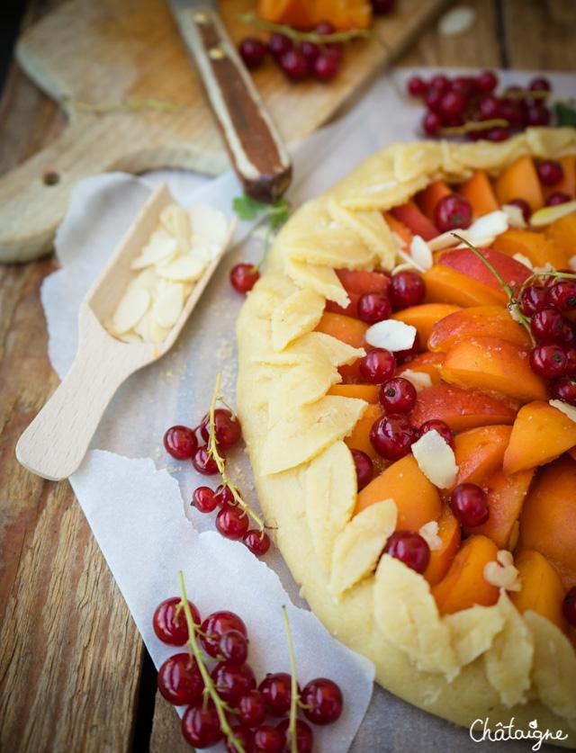 Tarte rustique aux abricots et groseilles